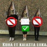 Suomen vihrein ja luovin luokka on valittu!