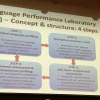 Lukiolaisille tarkoitettu Profilang-kielisimulaatio esittelyssä